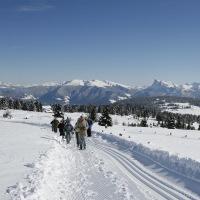 Winterwanderweg auf das Rittner Horn
